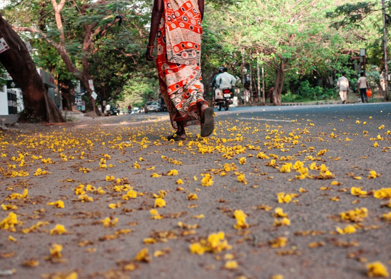 flower-strewn-path-blog